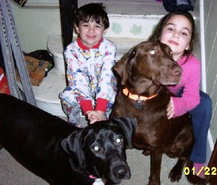 Kids Love Foster Dogs